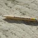 Petit crayon Geocaching