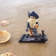 Figurine Pirate Brick - Davy