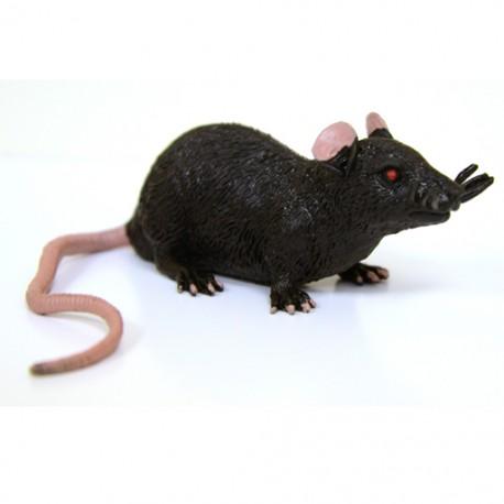"""Cache """"Créature"""" Rongeur - Rat Noir"""