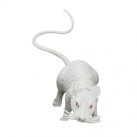 Cache Rat blanc