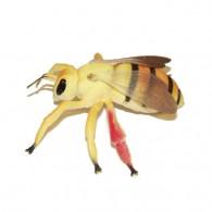 """Cache """"Créature"""" Insecte - Grosse Abeille"""