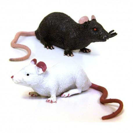 """Cache """"Créature"""" Rongeur - Rat Noir + Rat Blanc"""