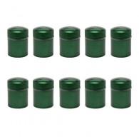 Nano Cache Container magnétique verte X10