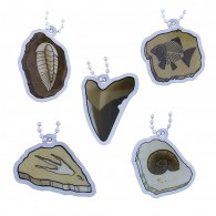 EarthCache™ Fossil Tag Full Set - Lot de 5 Travel Tags