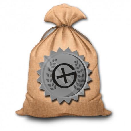 Grab Bag Geocaching - Silver