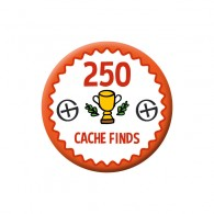 Badge Geocaching - 250 Finds