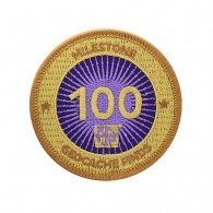 Milestone Patch - 100 Finds