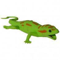 Cache Gecko