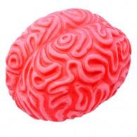 """Cache """"sanguinolente"""" - Gros Cerveau"""